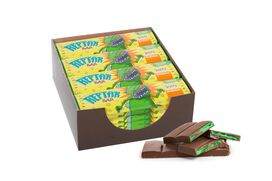 Rugrats Reptar Bar 24 count box