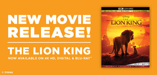 Primary Slider - Lion King - Now Available on 4K UHD, Digital & Blu-ray - Now Available