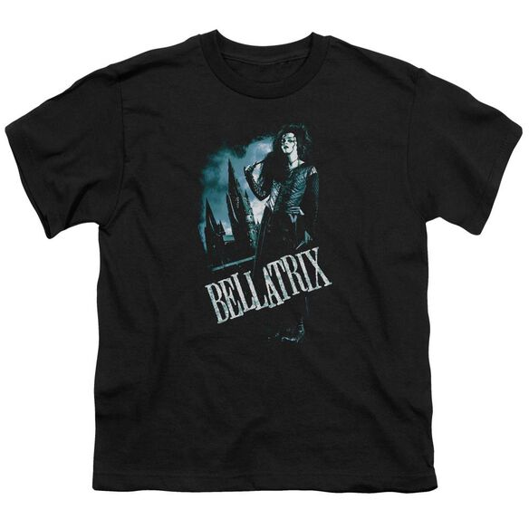 Harry Potter Bellatrix Full Body Short Sleeve Youth T-Shirt
