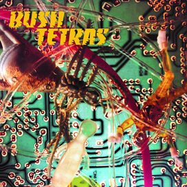 Bush Tertas - There Is A Hum / Seven Years