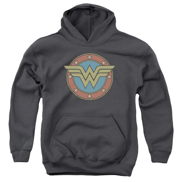 Dc Ww Vintage Emblem Youth Pull Over Hoodie