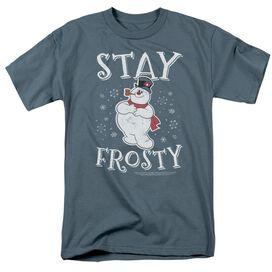 Frosty The Snowman Stay Frosty Short Sleeve Adult Slate T-Shirt