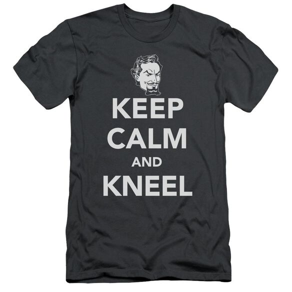 Dc Keep Calm And Kneel Short Sleeve Adult T-Shirt