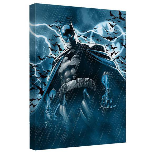 Batman Stormy Knight Quickpro Artwrap Back Board