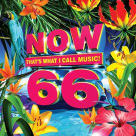 Various Artists - Now 66 (Various Artists)