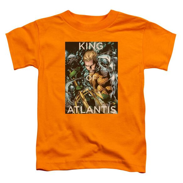 Jla King Of Atlantis Short Sleeve Toddler Tee Orange T-Shirt