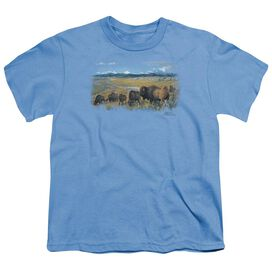 Wildlife The Passing Herd Short Sleeve Youth Carolina T-Shirt