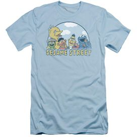 Sesame Street Sesame Group Short Sleeve Adult Light T-Shirt