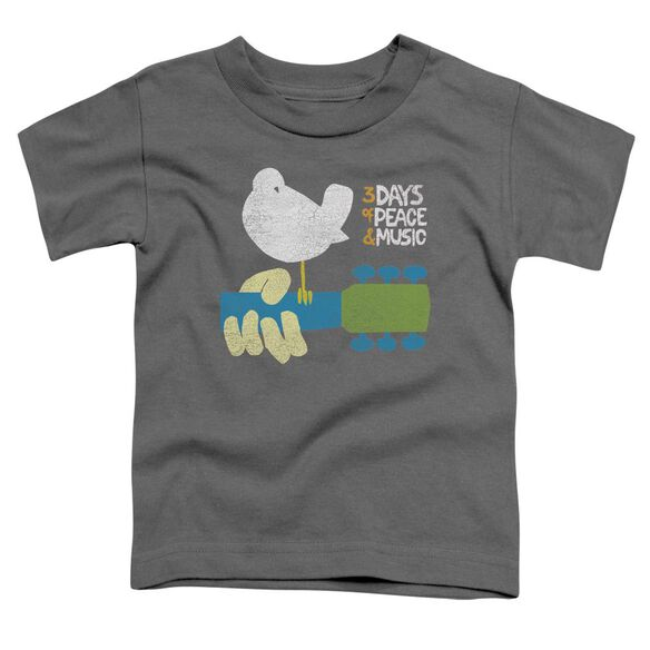 Woodstock Perched Short Sleeve Toddler Tee Charcoal T-Shirt