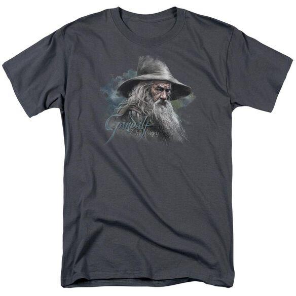 The Hobbit Gandalf The Grey Short Sleeve Adult T-Shirt