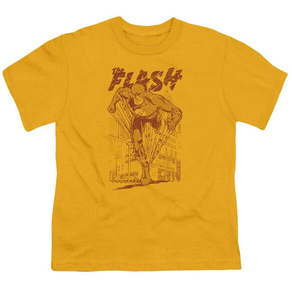 Dc Busting Out Short Sleeve Youth T-Shirt