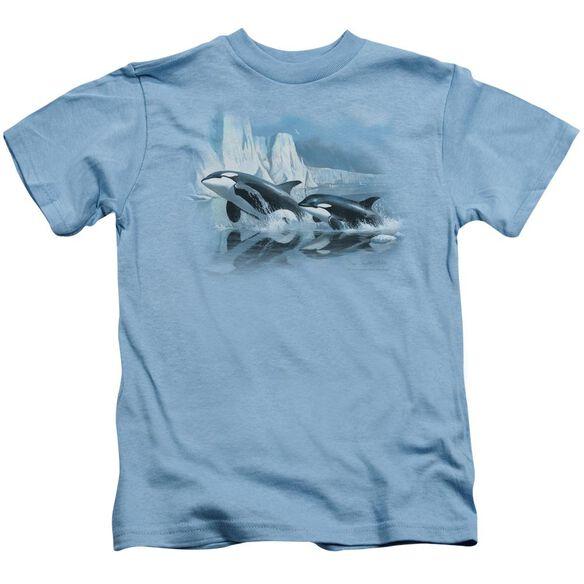 Wildlife Glaciers Edge Orcas Short Sleeve Juvenile Carolina Blue T-Shirt