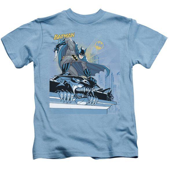 Batman Two Gotham Gargoyles Short Sleeve Juvenile Carolina T-Shirt