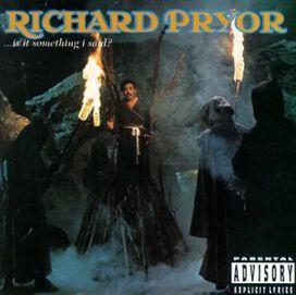 Richard Pryor - ...Is It Something I Said?