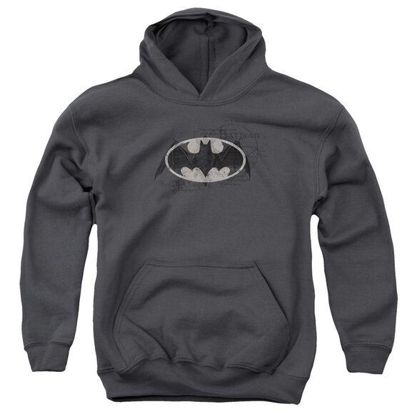 Batman Arcane Bat Logo Youth Pull Over Hoodie