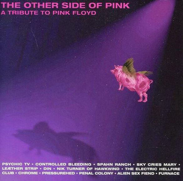 Other Side Of Pink: A Tribute To Pink Floyd / Var
