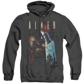 Alien Around The Corner-adult