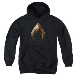 Justice League Movie Aquaman Logo Youth Pull Over Hoodie