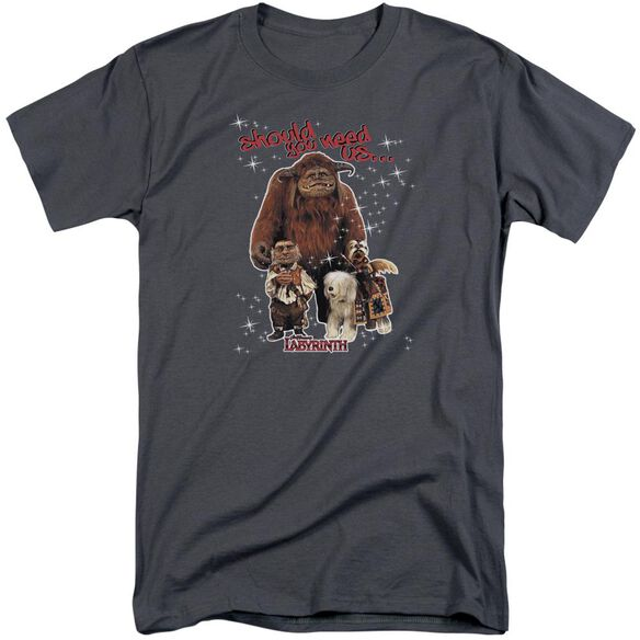 Labyrinth Should You Need Us Short Sleeve Adult Tall T-Shirt
