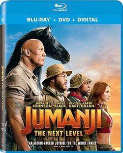 Jumanji: Next Level (2pc) (W/DVD) / (2pk AC3 Digc)