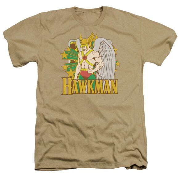 Dc Hawkman Stars Adult Heather