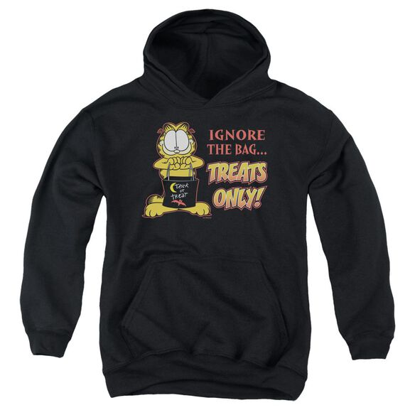 Garfield Treats Only Youth Pull Over Hoodie