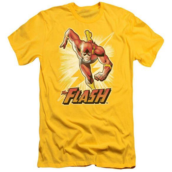 Jla Flash Short Sleeve Adult T-Shirt