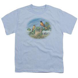 Wildlife Orioles And Farm Short Sleeve Youth Light T-Shirt