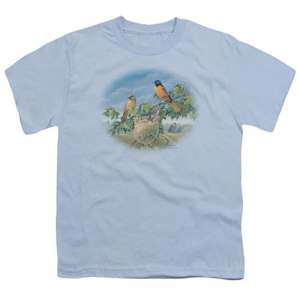 Wildlife Orioles And Farm Short Sleeve Youth Light T-Shirt