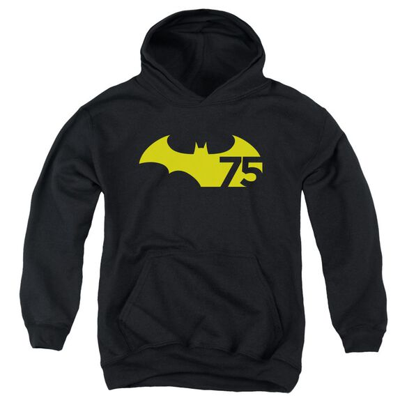 Batman 75 Logo 2 Youth Pull Over Hoodie