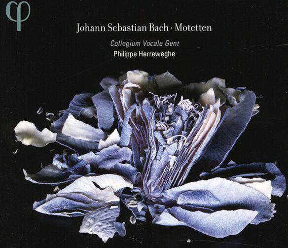 J.S. Bach - Motets BWV 225-230