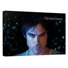 Vampire Diaries Damon Eyes Canvas Wall Art With Back Board