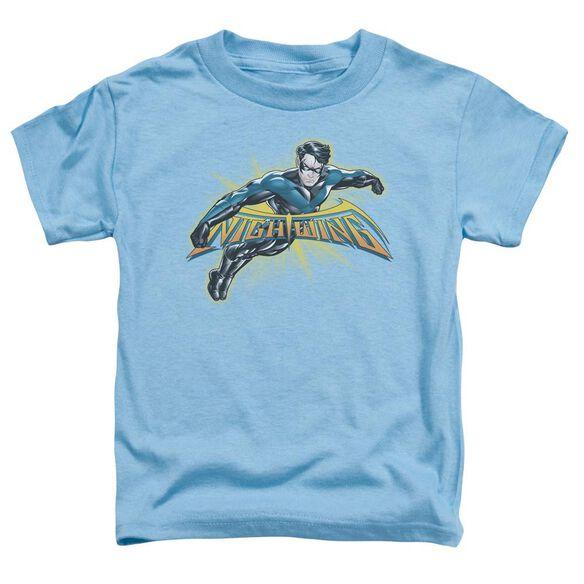 Batman Nightwing Burst Short Sleeve Toddler Tee Carolina Blue Sm T-Shirt