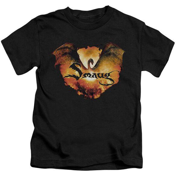 Hobbit Reign In Flame Short Sleeve Juvenile T-Shirt