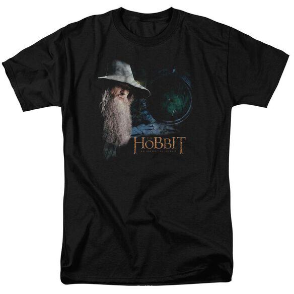 The Hobbit The Door Short Sleeve Adult T-Shirt