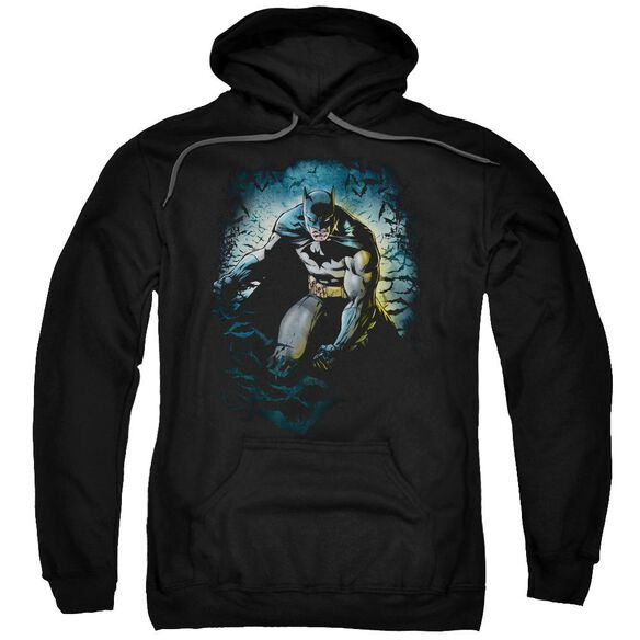Batman Bat Cave Adult Pull Over Hoodie Black