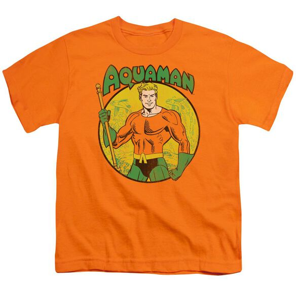 Dc Aquaman Short Sleeve Youth T-Shirt