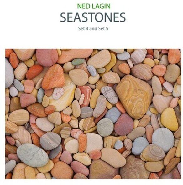 Ned Lagin - Seastones: Set 4 & Set 5
