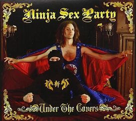 Ninja Sex Party - Under the Covers