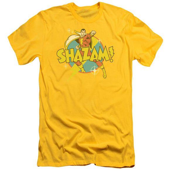 Dc Power Bolt Short Sleeve Adult T-Shirt