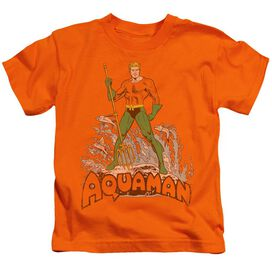 Dc Aquaman Distressed Short Sleeve Juvenile Orange Md T-Shirt