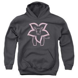 Steven Universe Lion Youth Pull Over Hoodie