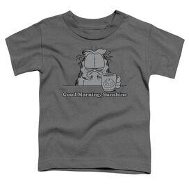 Garfield Good Morning Sunshine Short Sleeve Toddler Tee Charcoal Md T-Shirt