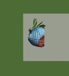 Bichkraft - Mascot