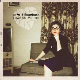 The Mr. T Experience - Shards Vol. 3