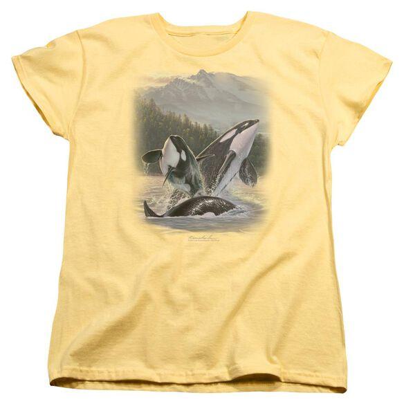 Wildlife Breaching Orcas Short Sleeve Womens Tee T-Shirt