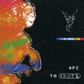 Pitch Black (Nz) - Ape to Angel