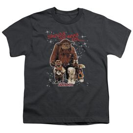 Labyrinth Should You Need Us Short Sleeve Youth T-Shirt