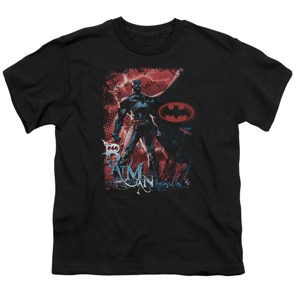 Batman Gotham Reign Short Sleeve Youth T-Shirt