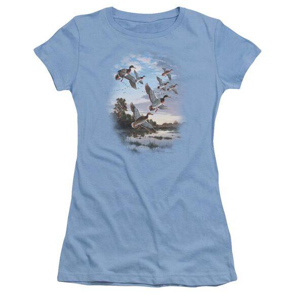 Wildlife Evening Flight Mallards Short Sleeve Junior Sheer Carolina T-Shirt